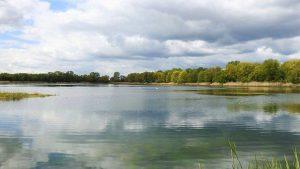 Landal Village l'Eau d'Heure Ardennen