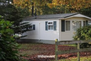 Chalet Wellness in Epe Veluwe