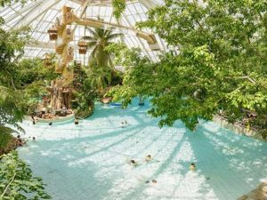 Center Parcs De Vossemeren (100.00 EUR)